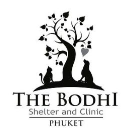 The Bodhi